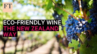 Eco-friendly vineyards, the New Zealand way   FT Food Revolution