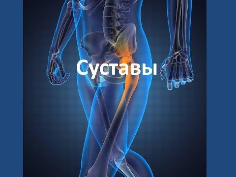 Гонартроз коленного сустава 2 степени: симптомы