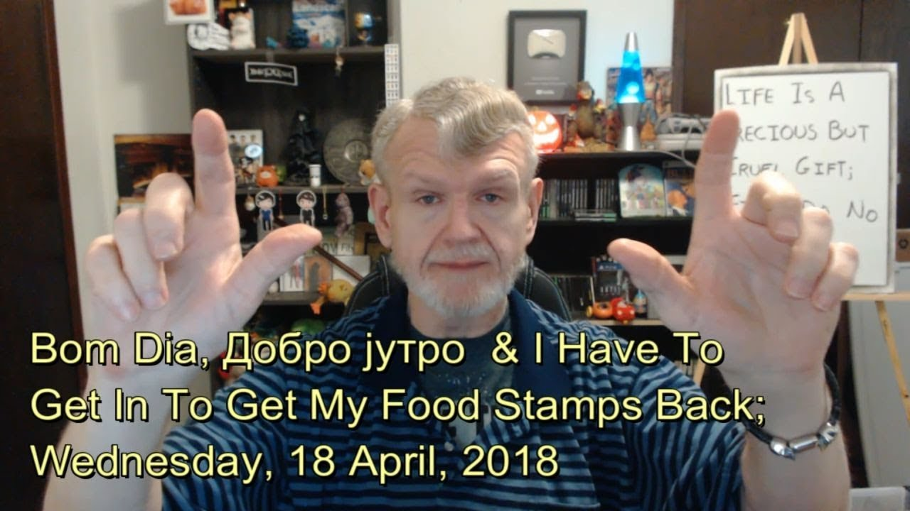 My Food Stamp Benefits