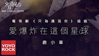 鹿小草《愛爆炸在這個星球》【只為遇見你 Nice to Meet You OST電視劇插曲】官方動態歌詞MV (無損高音質)