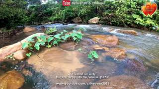 Beautiful Of Nature Flowing Water 60mins Of River Sounds