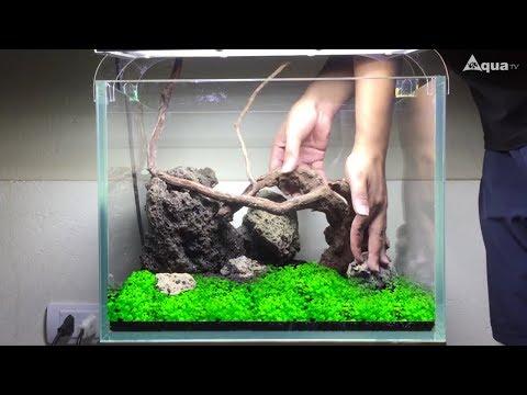 [SETUP] Hồ thủy sinh 40cm full trân châu ngọc trai (Nano Aquarium Setup - Step by Step)