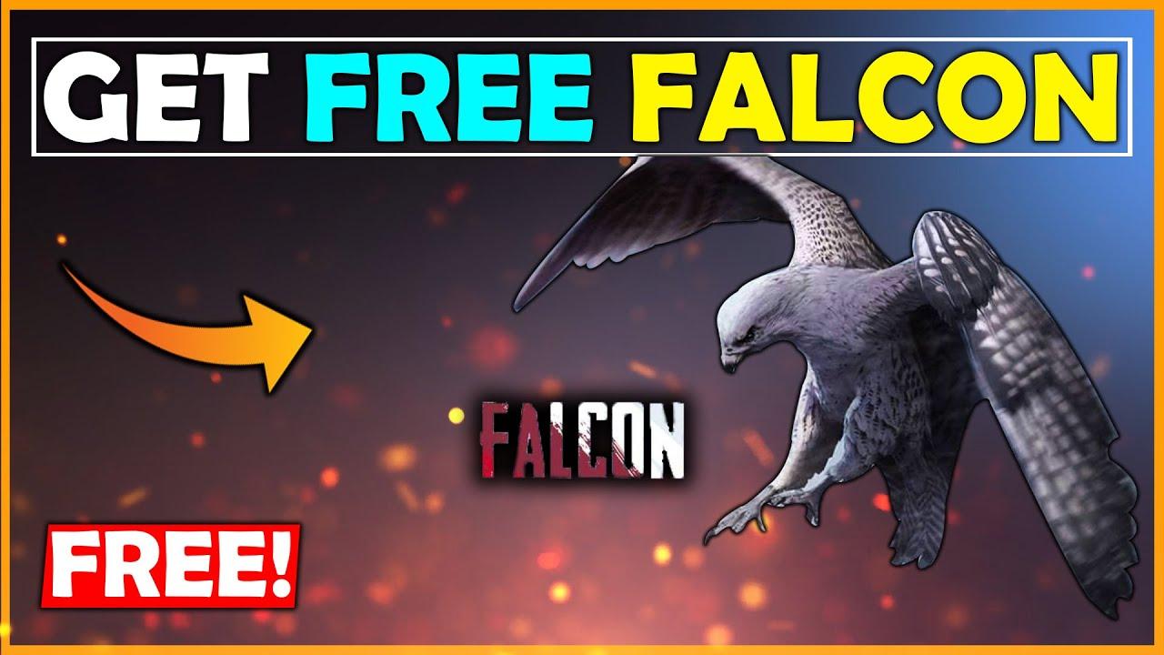 How To Get Falcon In Pubg Mobile Season 10