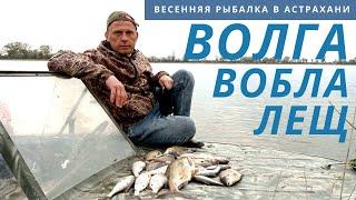 ВОТ ТАКОЙ ЛЕЩара МОЯ РЫБАЛКА Не нужен нам берег Турецкий Астраханская рыбалка