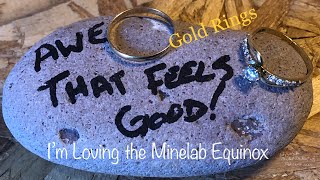 Minelab Equinox 600 and the first gold of 2019