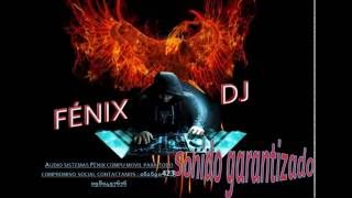 HUAYNOS PERUANOS FULL MIX FENIX DJ