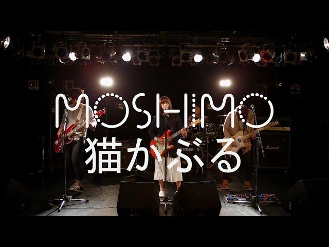 MOSHIMO「猫かぶる」MV