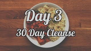 Day 3 | 30 Day Cleanse
