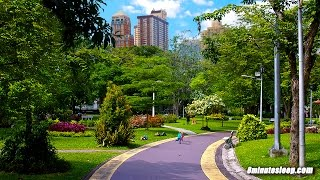 City Park Sounds For Relaxation | Birds, Kids Playing, Light Traffic | White Noise  & Study Aid