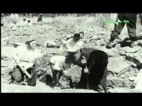 La Nascita Dello Stato Di Israele (1948) 1_3