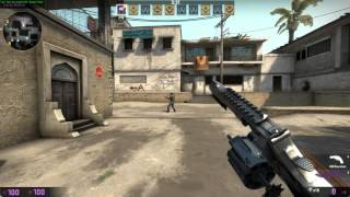 CS:GO - R8 Revolver first impressions + animations!