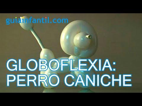 Globoflexia c mo hacer un perrito caniche con globos - Como hacer figuras con globos ...