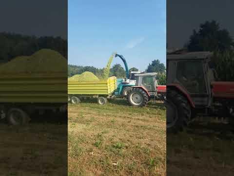 Mengele Mamut 7300 Siliranje Kukuruza 2018