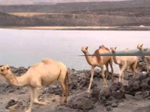 Djibouti et ses environs