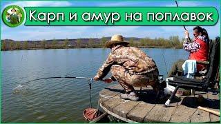 Ловля карпа и амура весной на поплавок. Отчет о рыбалке.