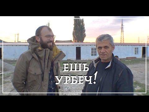 Дагестанские москвичи )))).