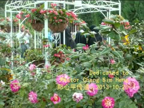 singapores garden by the bay flower conservatory mid autumn festival part 2