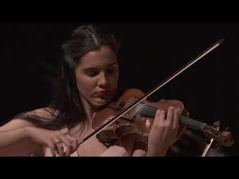 Johannes Brahms, Concierto para violín y orquesta Op  77  -  Allegro - Adagio - Allegro Giocoso