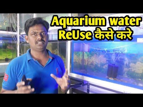 HOW to fix cloudy aquarium water | Aquarium water Reuse कैसे करे | HOW  to clean Aquarium water