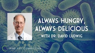 Always Hungry, Always Delicious with Dr. David Ludwig | MGC Ep. 7