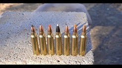 Whats The Best .223 Varmint Bullet?