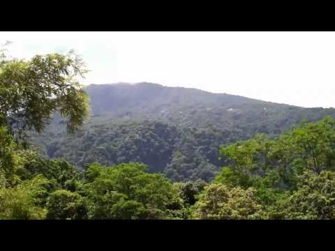 WNT Segment 3  Giraudel to Wotten Waven - Dominica