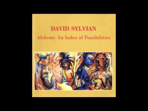 David Sylvian - Words With The Shaman Part 1 - 2 (wav)