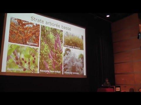 Fête2016 - Les légumineuses dans les forêts nourricières avec Caroline Dufour-L'Arrivée