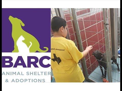 Tour Of BARC Animal Shelter Home School Fieldtrip