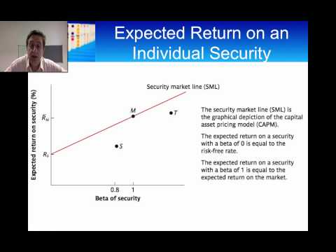Introduction to the Capital Asset Pricing Model (CAPM)