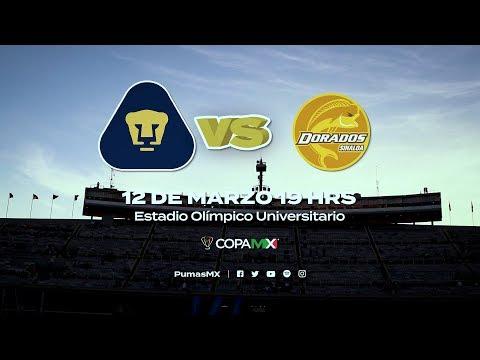 CL19 I Color Copa MX I Pumas vs. Dorados