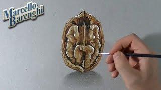3D drawing walnut kernel