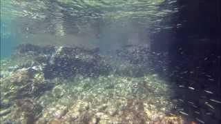 Gopro Hero 3 Black Edition Diving Snorkeling In Spain Majorca Part 4
