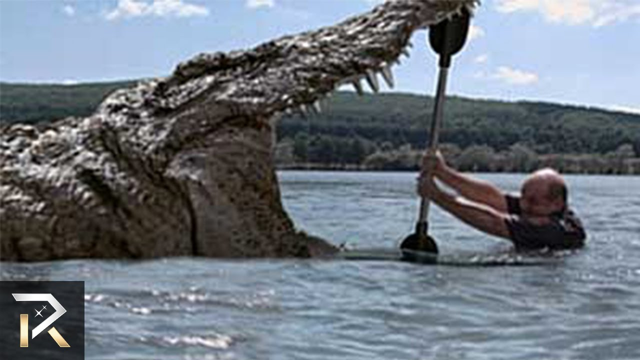 Prehistoric creatures that still exist today youtube for Best fishing time today