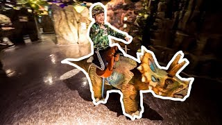 Riding on Dinosaurs at Exploria Indoor Play Center