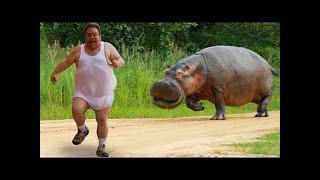 Gülmekten Yarılacaksınız ???? | Funny Animals  - Komik Hayvan Videoları