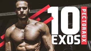 TOP 10 : MEILLEURS EXOS PECS