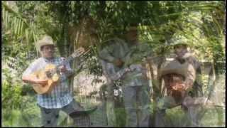 """dueto los armadillos """"cuerdas sonoras"""""""