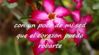 Mi NiÑa Bonita- Los ultimos de la Clase.m4v