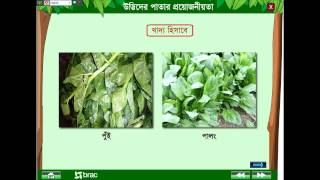 General Science : Morphology of plant 2
