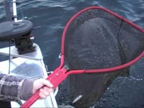 RRO - Okanagan Lake Rainbow Fishing