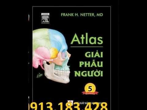 ATLAS giải phẫu người 2013, ATLAS giải phẫu người 2013