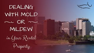 Dealing with Mold or Mildew in your Portland Rental Property
