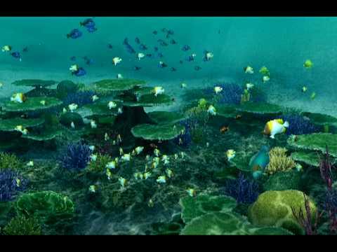 Endless Ocean: Blue World -- Carrickfergus (Title Theme)
