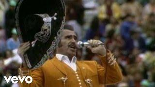 Video Vicente Fernández - Por Si No Te Vuelvo A Ver download MP3, 3GP, MP4, WEBM, AVI, FLV Desember 2017