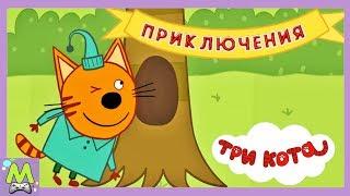 Три Кота Приключения.Путешествие с Компотом по Лесу.Новая Игра про Котиков