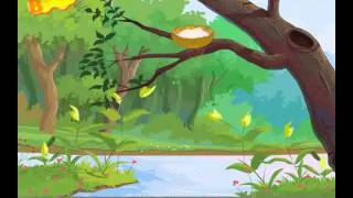 Famous Tamil Nursery Rhymes for Childrens Chittu Kuruvi