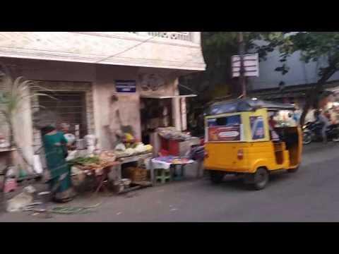 Индия. Тамил Наду. Две милые собачки и торговцы тростником. Жизнь улицы. Репортаж Марии Карпинской