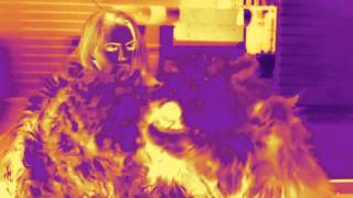 Teledysk: TEN TYP MES x ROUTE 94 -  Lovemylife (Phunkill & Black Belt Greg mix)