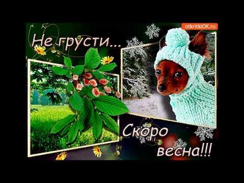 """""""С НАСТУПАЮЩЕЙ ВЕСНОЙ""""!!!!!"""